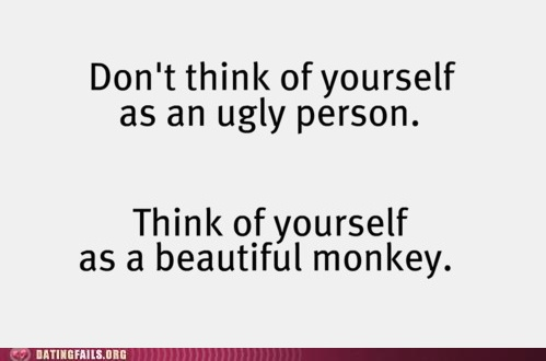 i dont even know what to think about this, but i laughed.Too Funny, Make Me Laugh, Ugly Personalized, Good Advice, Beautiful Monkeys, Self Esteem