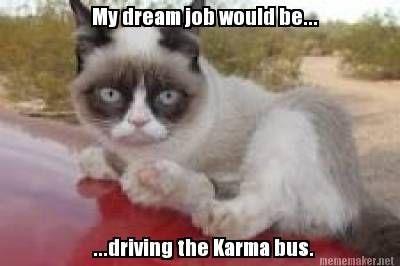 My dream job would be driving the karma bus. Beep beep yeah!