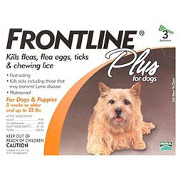 Buy Cheap FRONTLINE Plus for Dogs Online | Frontline Plus Flea & Tick Treatment For Dog at Best Price in Canada - Budgetpetcare.com