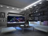 RAFA KORALOWA W AKWARIUM: Akwarium morskie z rafą koralową to połączenie sztuki z naturalnym pięknem. Wprowadź trochę egzotyki do swojego domu. Akwarium może być wolnostojącym meblem, obrazem na ścianie lub wbudowane w ścianę oddzielającą dwa pomieszczenia. Akwaria morskie dzielimy na kilka typów.