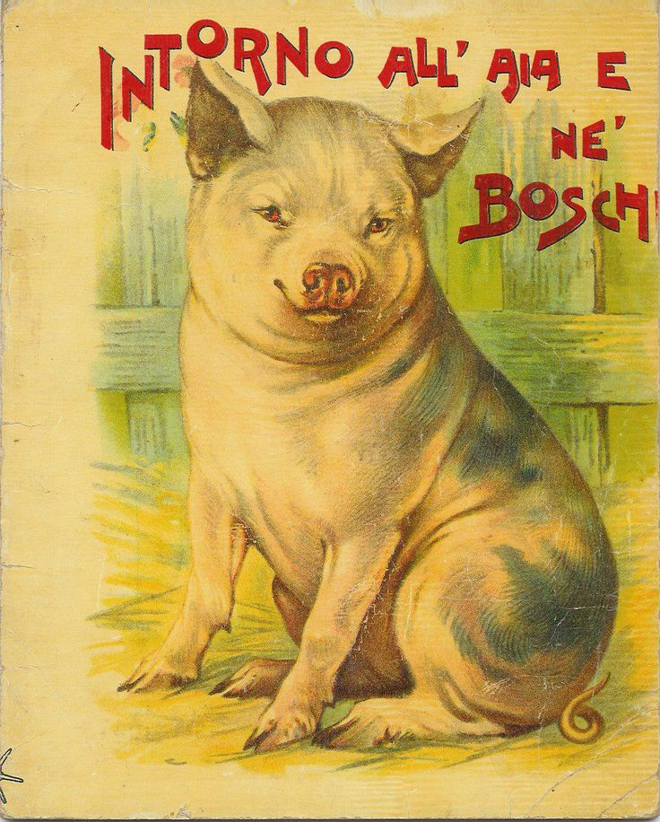 INTORNO ALL'AIA E NE' BOSCHI (italian XIX century child book)