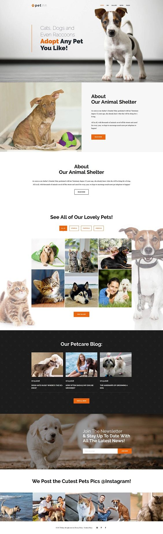 This SEO-friendly and well-documented theme is your match if you want to highlight your animal care with a powerful website. This Cherry Framework 5 based theme has a fully responsive design that is underpinned by animals & pets backgrounds, pleasant tones, and Parallax scrolling animation. Cherry Team Members plugin will help you to make your animal adoption website look far more reliable by presenting your professional team. A powerful TM Gallery will help you to showcase your animals that…
