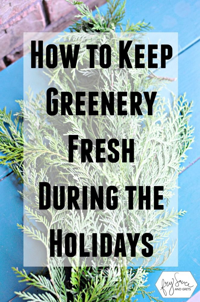 Learn the two simple tricks on how to make your fresh christmas trees, greenery, garlands, and wreaths last longer and from drying out during the holidays from FrySauceandGrits.com