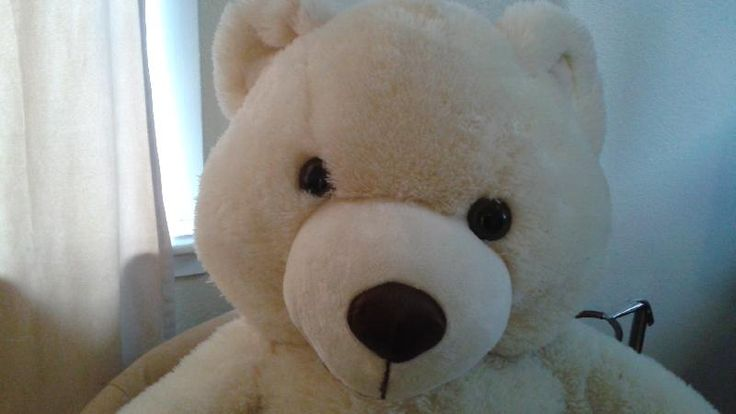 "Found on 10 Jun. 2016 @ Beacon Avenue, SIdney, British Columbia, Canada. Very quiet teddy bear found on main street of Sidney, BC. Enquired about ""Ted"" at local restaurant. No one knew anything about this fellow and suggested we take ""Ted"" home. As mentioned very quiet.... Visit: https://whiteboomerang.com/lostteddy/msg/2h9fe2 (Posted by Rose on 11 Jun. 2016)"