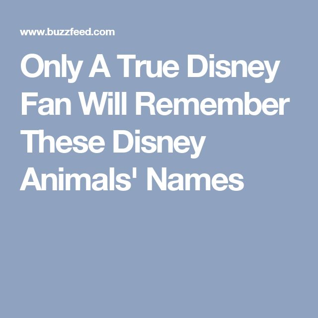 Only A True Disney Fan Will Remember These Disney Animals' Names