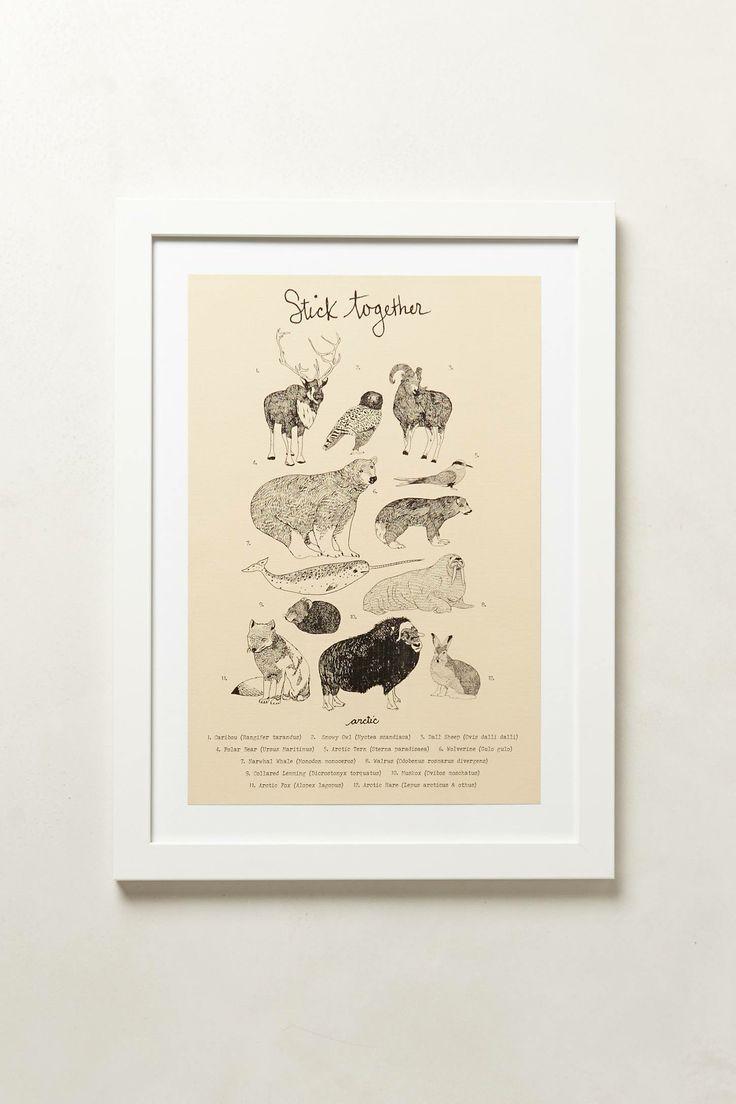 BUY   Stick Together Arctic Animal Print - anthropologie.com