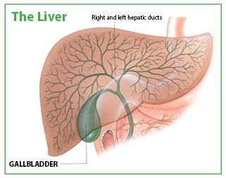 things you must know you dont have gallbladder