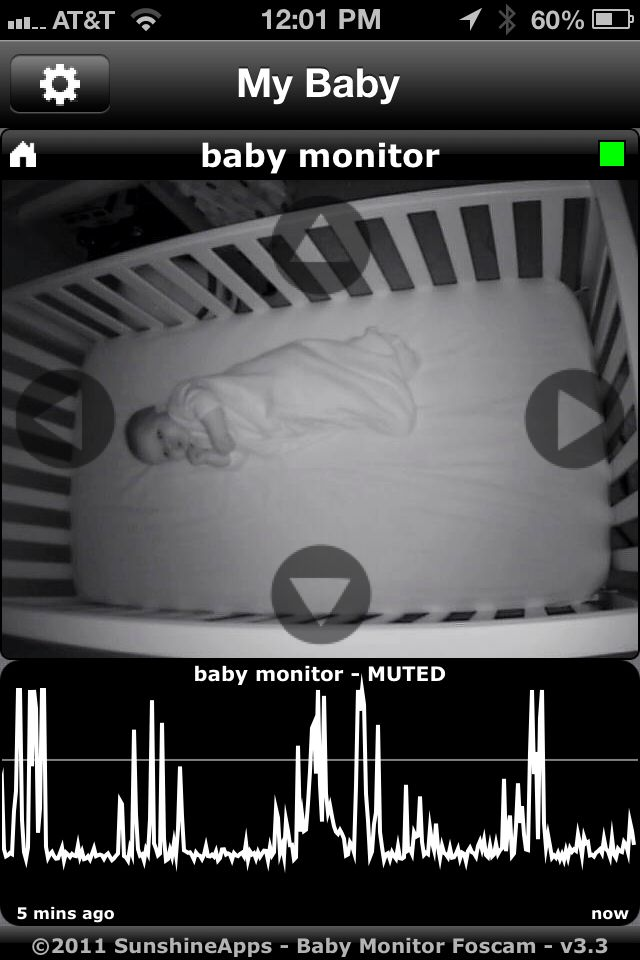 Baby Monitor Foscam with Audio