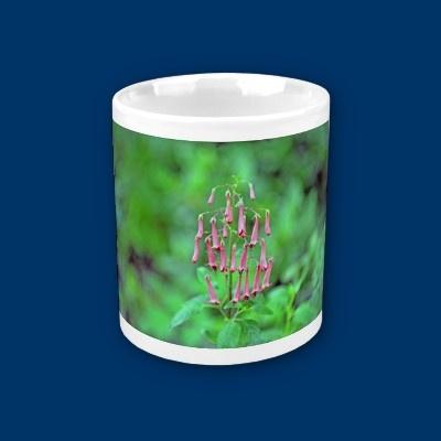 flower mug  http://freedivingguide.com/