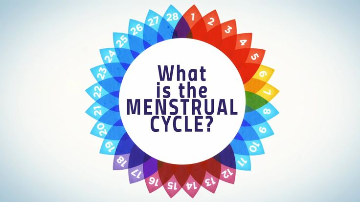 how to work out your menstrual cycle