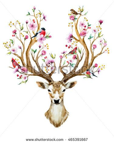 watercolor vector illustration isolated deer, big…