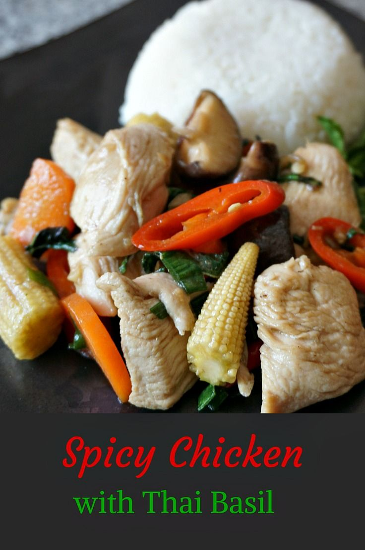 Thai Basil Chicken - A spicy stir fry dish with fragrant Thai Holy Basil. This recipe is easily converted into a vegetarian dish and can be made mild or extra hot and spicy (just the way I like it best).