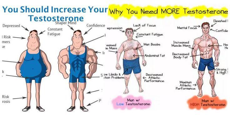 7 Body Hacks to Naturally Increase Testosterone Levels http://valentinbosioc.com/7-body-hacks-naturally-increase-testosterone-levels/#utm_sguid=180380,0bf4f476-1e77-9c0d-e85c-8d16c77d1c55