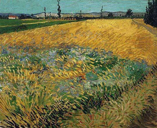 Campo di grano con le Alpilles sullo sfondo - 1888