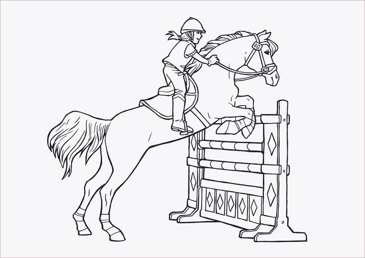 frisch pferd malvorlage com imagens  desenhos pintar