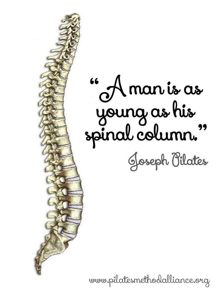 """A man is a young as his spinal column."" Joseph Pilates  Pinned by AnatomyStuff.co.uk"