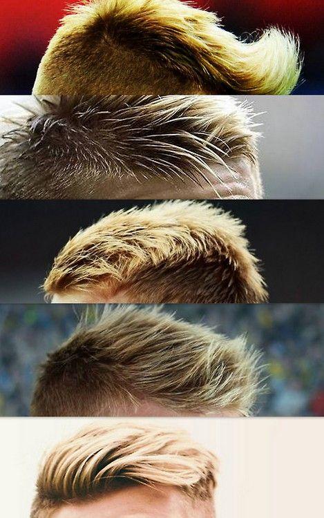 5 x Marco Reus' hair