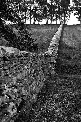 Dry Stone Walling - its an art!