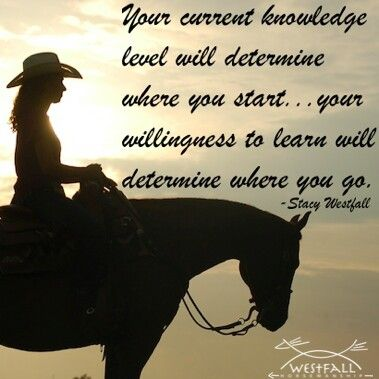 """""""Your current level will determine where you start. Your willingness to learn will determine where you go. --Stacy Westfall / true in more areas than just horse training."""