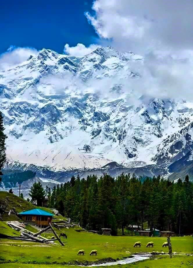 Nanga parbat from fairy meadows