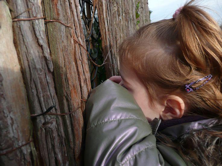 Hoenderdaell #zoo in #noordholland