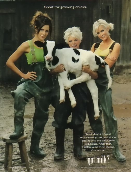 the Dixie Chicks were (and still are) my first and favorite country group. they got me into country music.