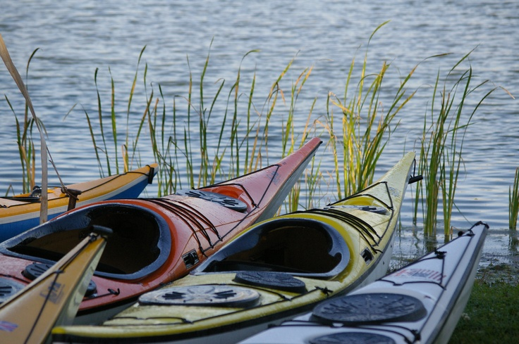 Kayaking in Charleston County Parks.....What a great way to spend the day!  www.charlestonscoutdoors.com