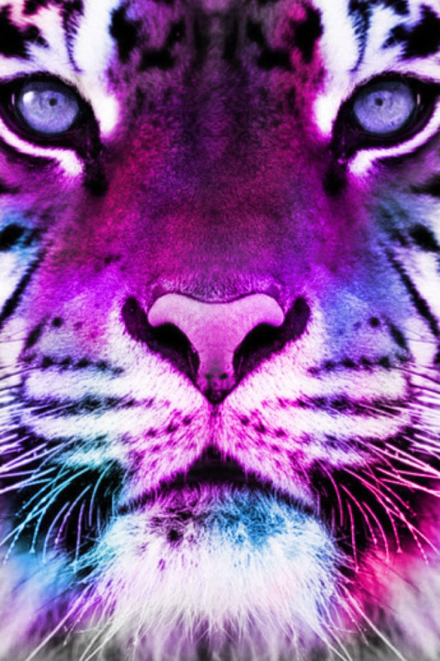 1000+ images about galaxy tigers on Pinterest | Desktop ...