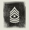 "Army Ranks.  I know them all except the enlisted.  Why do they have to make them all look so similar?!  At least I know that I can say ""Sergeant"" and usually be right.  :)"