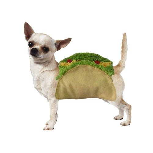 Taco Dog Pet CostumeHalloweencostumes, Tacos Dogs, Tacos Costumes, Chihuahuas, Mr. Tacos, Dogs Costumes, Dogs Halloween Costumes, Dog Costumes, Animal