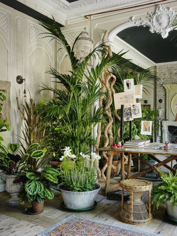 Erdeinrichtung @untamedorganica Green Indoor plants Tropical Boho Bohemian Relax Nature  Hippy  Bold Paint Styling Interior Design Home  Botanical tropics palm plant style design nature natural house