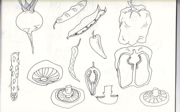 Pablo Picasso Contour Line Drawing : Best images about contour line drawings on pinterest