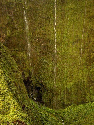 Anuncios, avisos y clasificados de viajes en Colombia : FOTO DE MIGUEL VIEIRA. Consiga ofertas increibles en los anuncios clasificados gratis de http://onvenia.com.co | onvenia