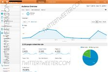 2923 Real unique website visitors from twitter in just one day.