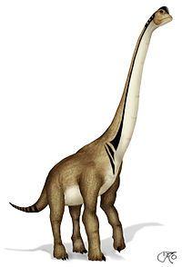 Digitally enhanced image of the sauropod, Ultrasaurus.