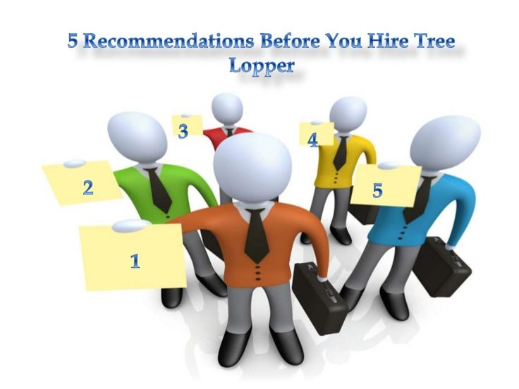 5 recommendations before you hire #Tree_Lopper