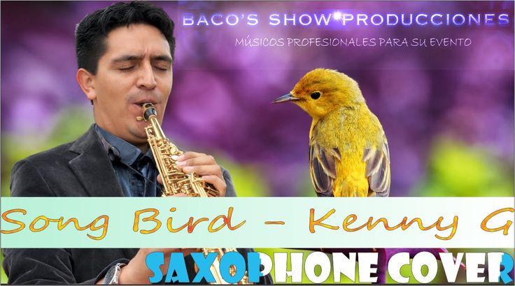 SAXOFONISTA SOLISTA PARA EVENTOS EN BOGOTA (SONG BIRD- KENNY G) #SaxofonistaenBogota #Saxofonistaparaeventos #SongBird #KennyG #Cover #RomaticMusic #Saxophone https://youtu.be/8767O5_T7Bs www.bacosshowproducciones.com
