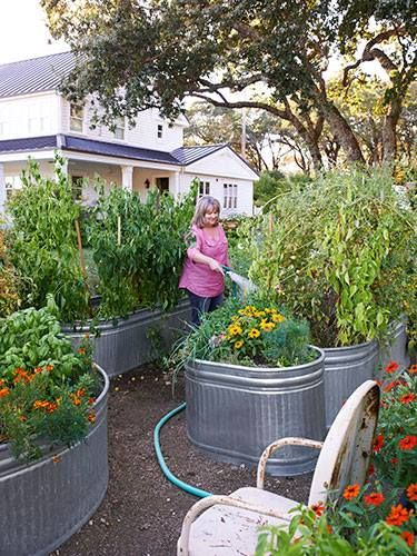 a container garden both for land based planting and for aquatics, using inexpensive for their size galvanized steel stock tanks.  Farm supply stores like Fleet Farm have them available year round.  Rubbermaid also makes stock tanks, good for overwintering your gold fish in zone where the fish would freeze outsdie.