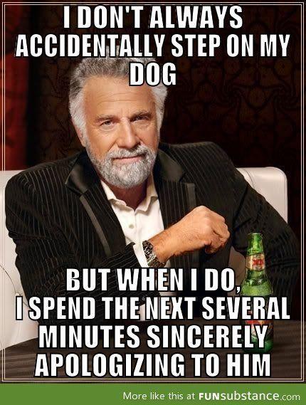 My dog has heard the sincerest of apologies.
