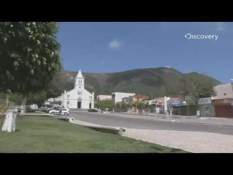 Wander Pugliesi - Historiador - explica: NAO HOUVE DITADURA NO BRASIL - YouTube