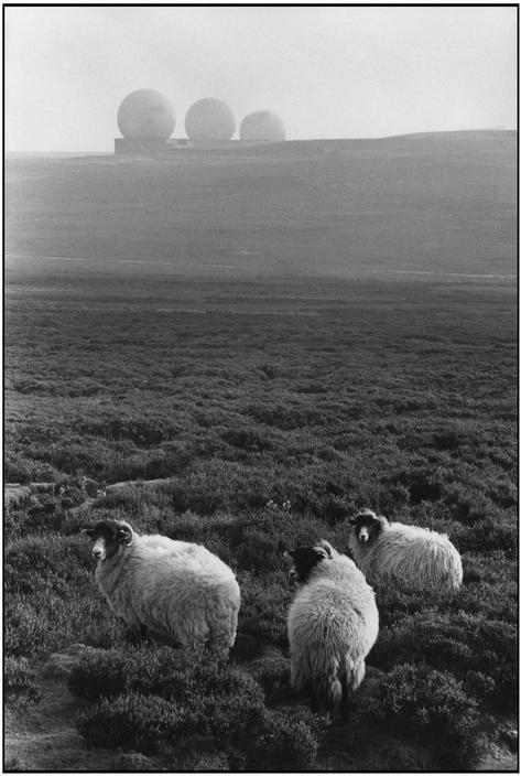 Martine Franck ENGLAND. Yorkshire. The Middleton Hout....