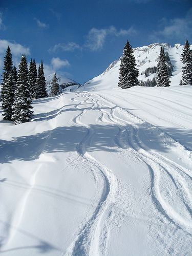Some downhill skiing is always dreamy! Fresh pow in the Canadian Rockies? Why yes please! :)