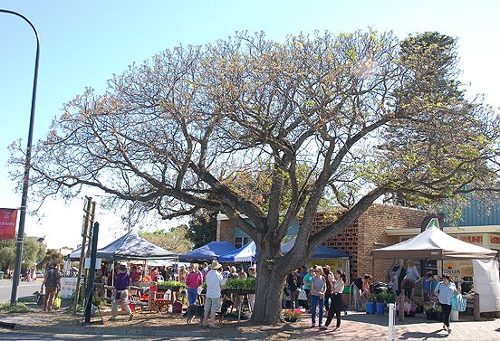 An hour's drive south of Adelaide, Willunga is a small historic township bordering one of our favourite wine regions, McLaren Vale. We decided to take an early drive on a sunny Saturday morning.