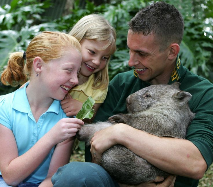 Featherdale Wildlife Park Finalist - Australian Tourism Awards 2009 - Major Tourist Attractions @QATAINFO #Australia Established on 7 acres of land originally purchased by Charles and Marjorie Wigg in 1953, Featherdale has evolved from a poultry farm into one of the best privately own wildlife parks in Australia. It is currently part of Anthology - The Travellers Collection. Through innovation, it has developed into one of Australia's finest tourist attractions in Greater Western Sydney.
