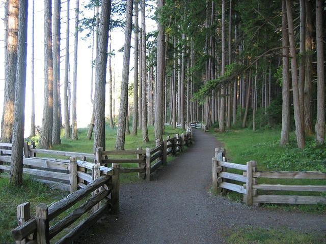 Rathtrevor Beach Provincial Park - Parksville, British Columbia