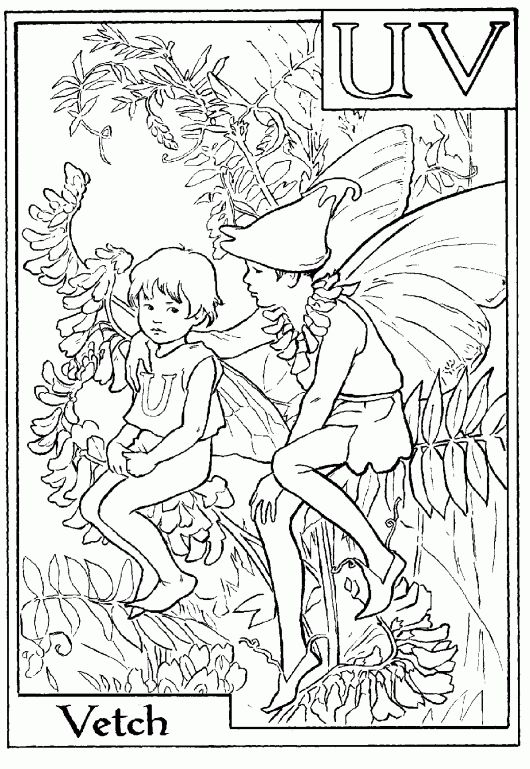 letter v for vetch flower fairy coloring page alphabet coloring pages alphabet flower fairies on do coloring pages - Coloring Pages Fairies Flowers