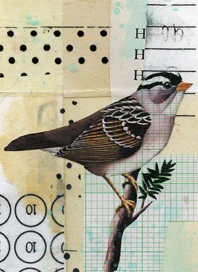 A Collage A Day: 90 Degrees by Randel Plowman with bird