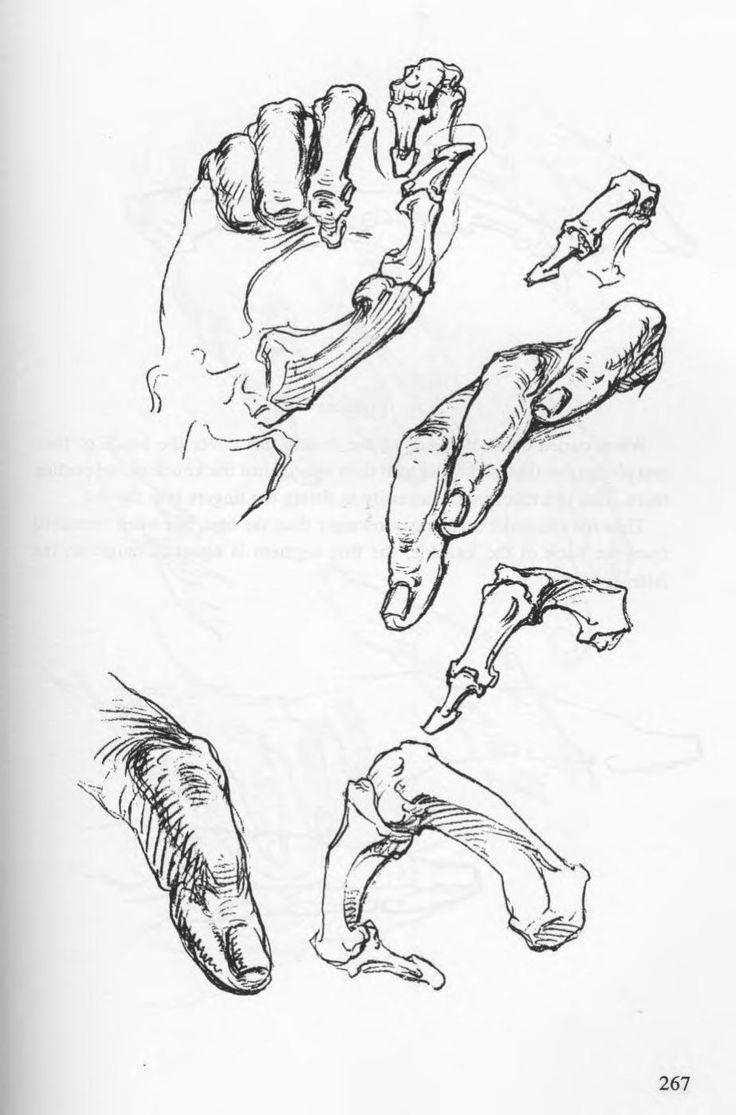 hand mirror sketch. Bridgman - Complete Guide To Drawing From Life.Artistic AnatomyMirrorDrawingLifeHuman AnatomyHand DrawnTatoosSketchingPoses Hand Mirror Sketch