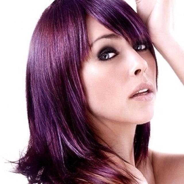 Hair Colors Ideas, Purple Hair, Brunettes Hair, Dark Hair, Shades Of Purple, The Colors Purple, Haircolor, Purplehair, Colors Hair