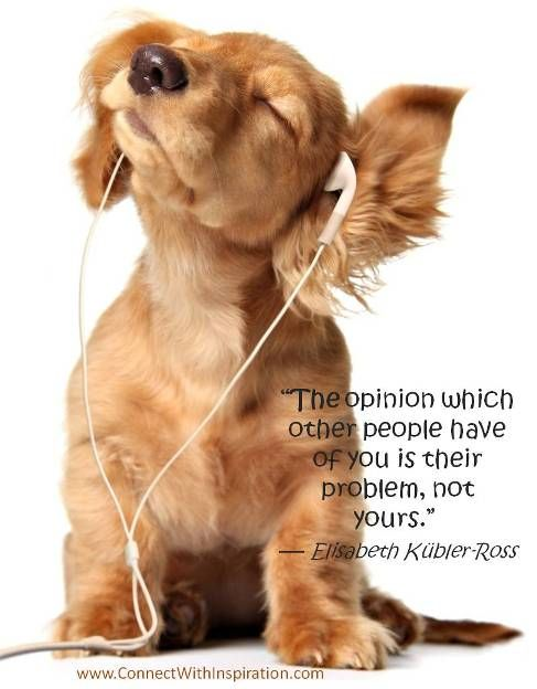"""""""The opinion which other people have of you is their problem, not yours.""""   ~Elisabeth Kübler-Ross"""